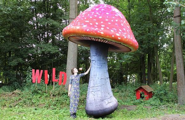 4m inflated mushroom